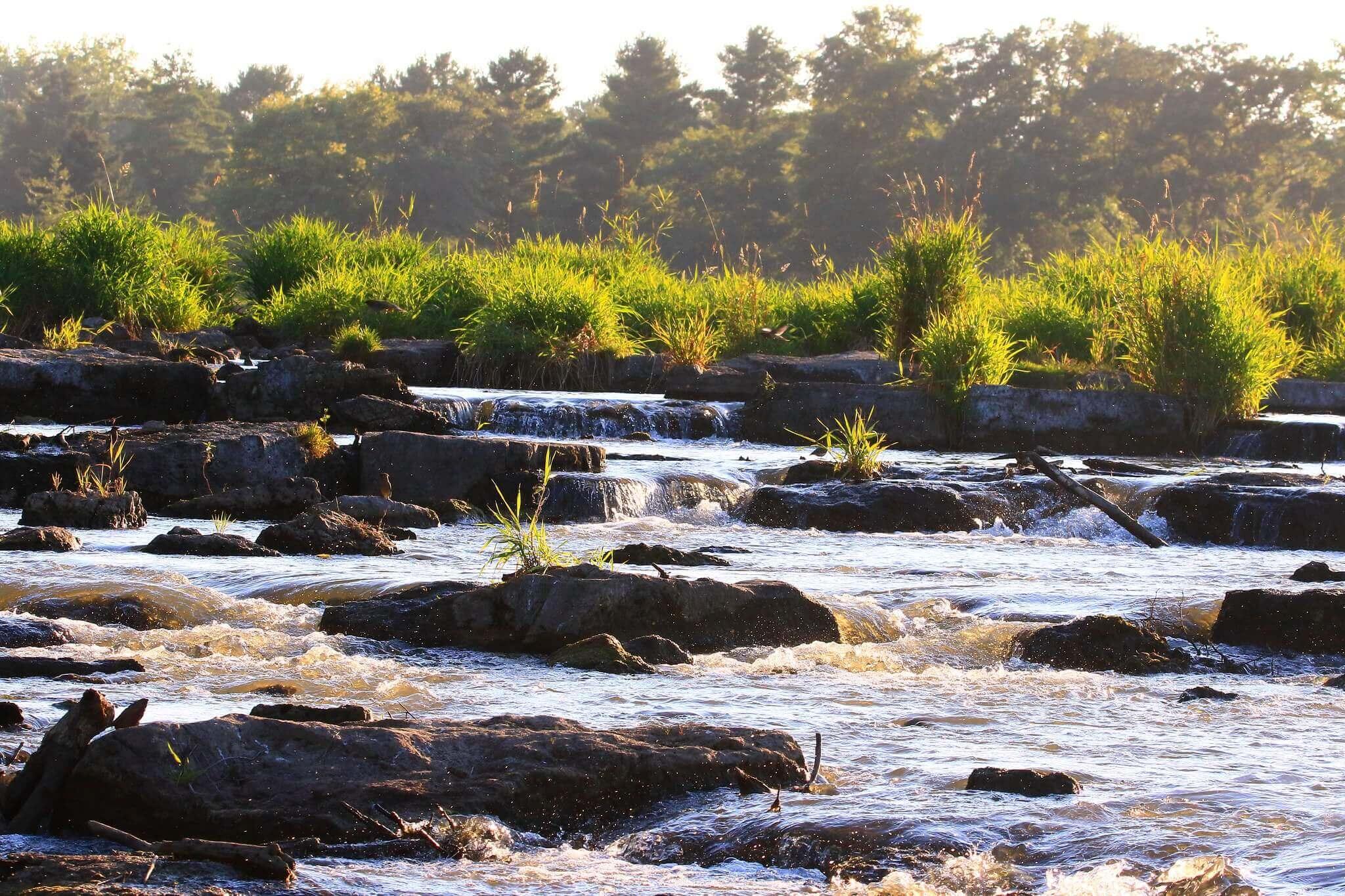 Turkey River Gallery Photo