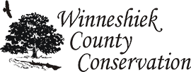 Tree, bird and Winneshiek County Conservation