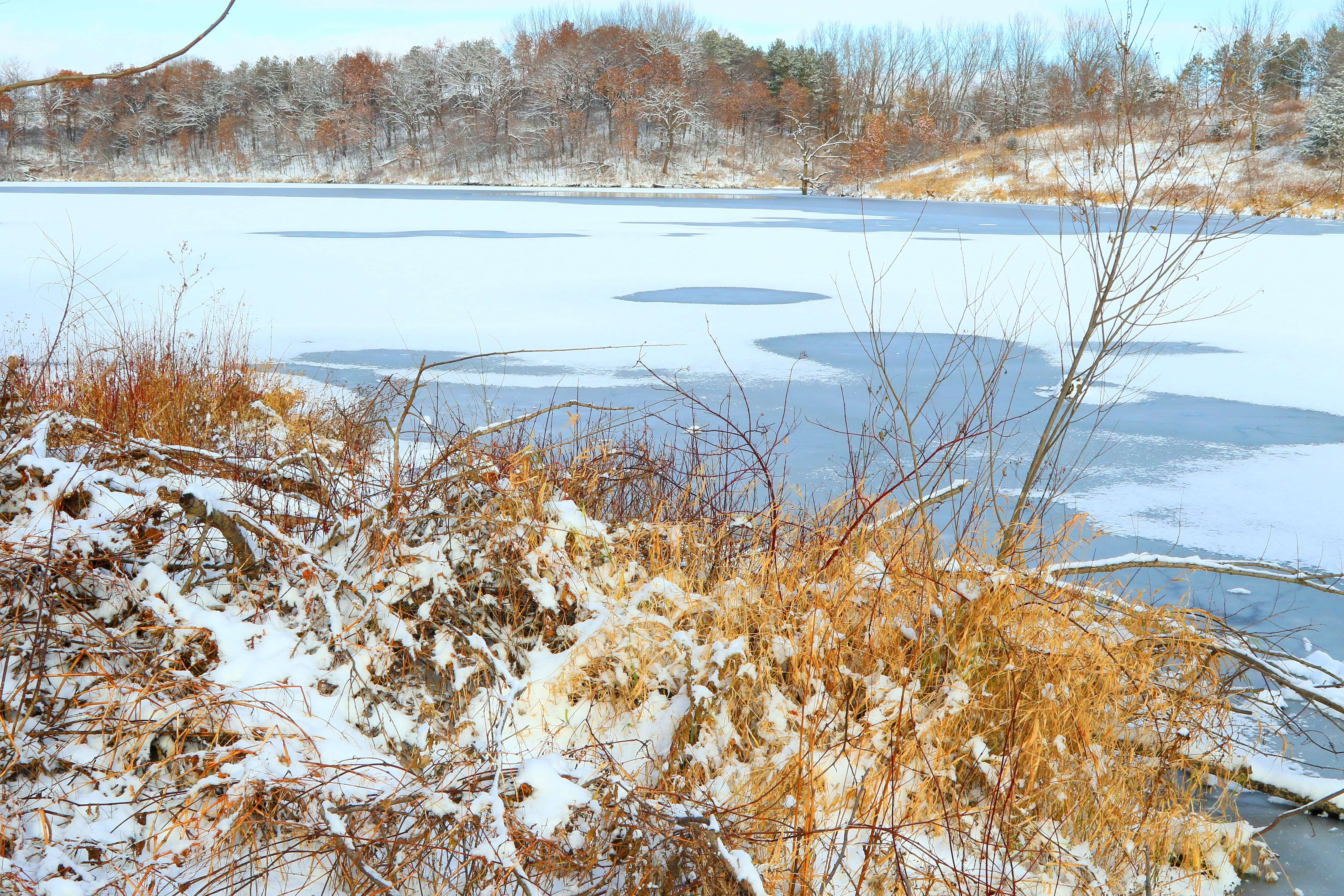 Lake Meyer Park and Campground Gallery Photo