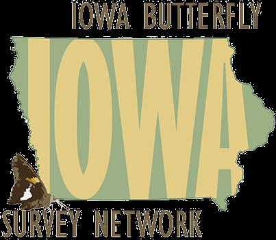 Iowa Butterfly Survey Network Logo